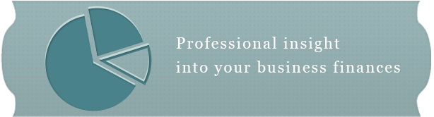 Professional insight into your business finances.